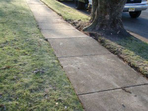 Sidewalk with tree root - After