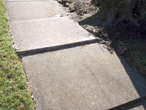 Sidewalk with tree root - Before